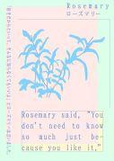 Rosemary-yutaka_satoh